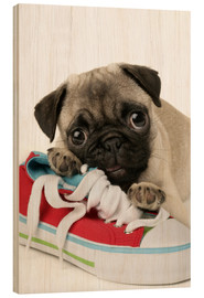 Wood  Pug pup and shoe - Greg Cuddiford