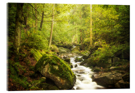 Acrylic print  Green Valley - Oliver Henze