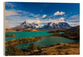 Wood print  View of the Torres del Paine - Walter Bibikow