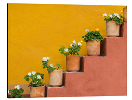 Aluminium print  Potted flowers on staircase - Don Paulson
