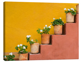 Canvas  Potted flowers on staircase - Don Paulson