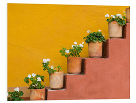 Forex  Potted flowers on staircase - Don Paulson