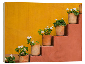 Wood print  Flowerpots on a staircase - Don Paulson