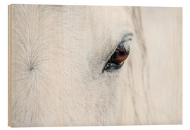Wood  Eye of the horse - Andreas Kossmann