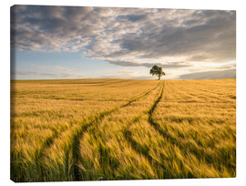 Canvas print  Lonely Tree in Field - Andreas Wonisch