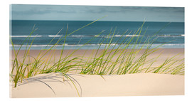 Acrylic glass  Dune with fine beach grass - Reiner Würz RWFotoArt