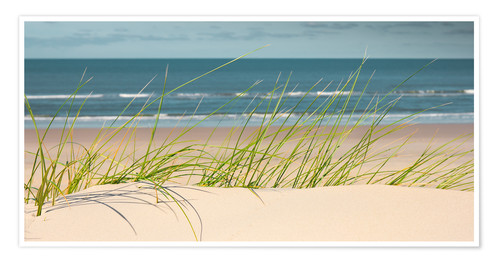 Premium poster Dune with fine beach grass