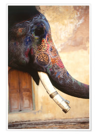 Dave Bartruff - Painted Indian elephant