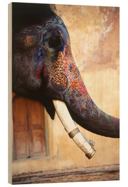 Wood print  Painted Indian elephant - Dave Bartruff