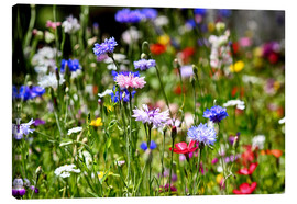 Canvas print  colorful flower meadow - Filtergrafia