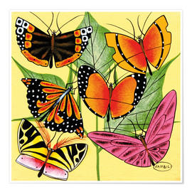 Premium poster  Colorful Butterflies - Kambili