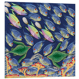 Foam board print  Reges fish and bustle - Majidu