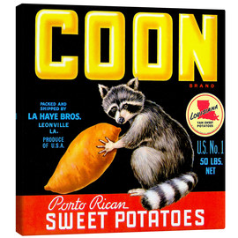 Canvas print  Coon - Advertising Collection
