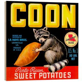 Wood print  Coon - Advertising Collection