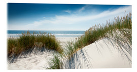 Acrylic print  Dune with fine shining marram grass - Reiner Würz