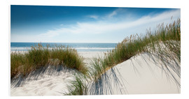 Forex  Dune with fine shining marram grass - Reiner Würz RWFotoArt