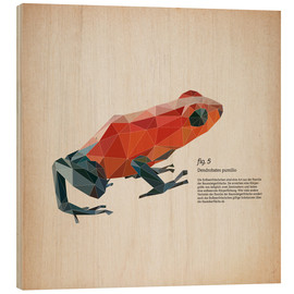 Wood print  fig5 polygon frog square - Labelizer