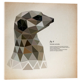 Acrylic print  fig4 Polygon meerkat  square - Labelizer