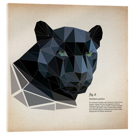 Acrylic glass  fig6 polygon Panther square - Labelizer