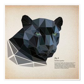 Premium poster  fig6 polygon Panther square - Labelizer