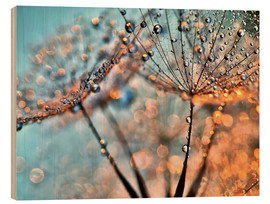Wood print  Dandelion reflections - Julia Delgado
