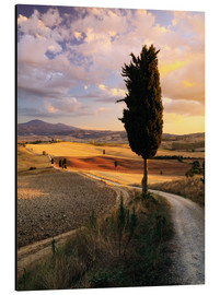 Alu-Dibond  Sunset over Val d'Orcia, Tuscany - Matteo Colombo