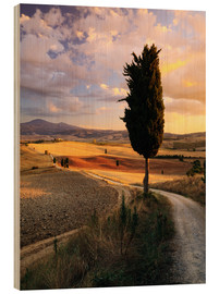 Wood  Sunset over Val d'Orcia, Tuscany - Matteo Colombo