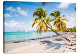Canvas print  Les Salines beach, Martinique - Matteo Colombo