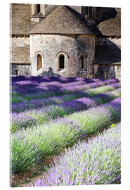 Acrylic glass  Senanque abbey and lavender, Provence - Matteo Colombo