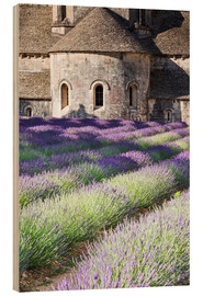 Wood  Senanque abbey and lavender, Provence - Matteo Colombo
