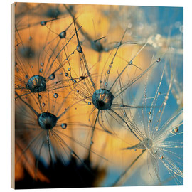 Wood print  Dandelion with dew - Dirk Driesen