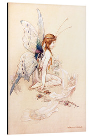 Alu-Dibond  The fairies brought her a pretty pair of wings - Warwick Goble