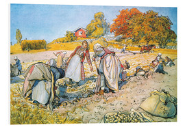 Foam board print  Digging for potatoes - Carl Larsson