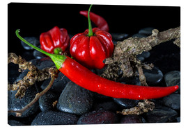 Canvas print  Chili & Habaneros - only red - Jürgen Seibertz