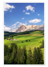 Premium poster  Green valley in South Tyrol - Matteo Colombo