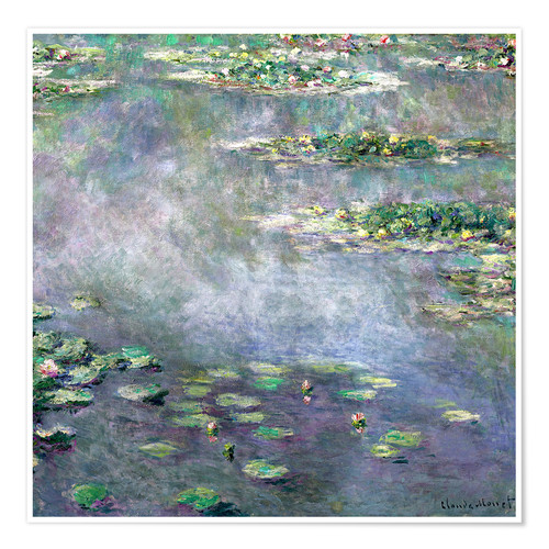 Premium poster Water-Lily pond