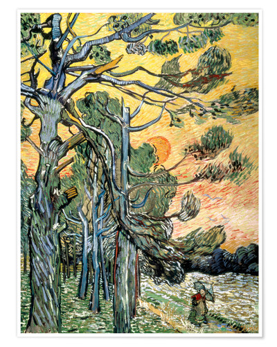 Premium poster Pines with Setting Sun and Woman