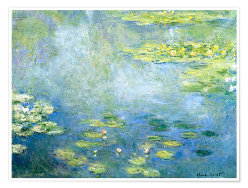 Poster Lily pond