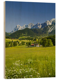 Wood print  Alpine Meadow - Rainer Mirau