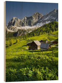Wood print  Alpine Dream - Rainer Mirau