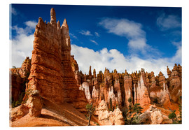 Acrylic glass  Queen's garden trail at Bryce Canyon - Circumnavigation