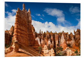 Foam board print  Queen's garden trail at Bryce Canyon - Circumnavigation