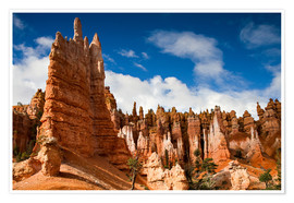 Premium poster  Queen's garden trail at Bryce Canyon - Circumnavigation