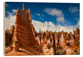 Wood print  Queen's garden trail at Bryce Canyon - Circumnavigation