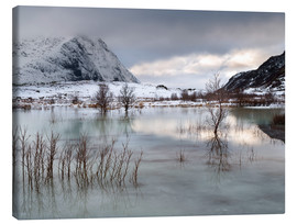 Canvas print  Frozen Lake | Lofoten, Norway - Markus Kapferer