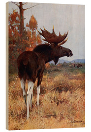 Wood  Elk or Moose - Wilhelm Kuhnert