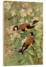 Wood print  Goldfinch - Wilhelm Kuhnert