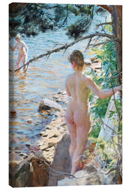 Canvas  Swimming in the summer - Anders Leonard Zorn