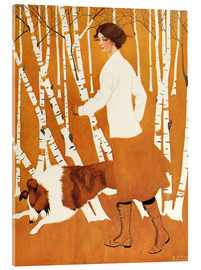 Acrylic print  Birches - Clarence Coles Phillips