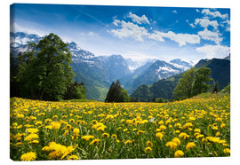 Canvas print  Braunwald in spring - Peter Wey